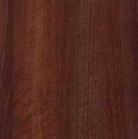 Amati Walnut RTF Thermofoil