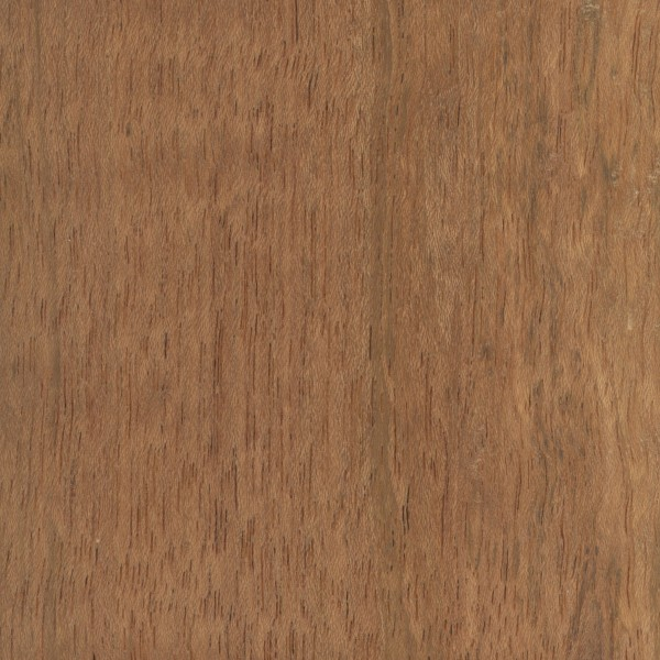 Brazilian Cherry exterior or outdoor cabinet door