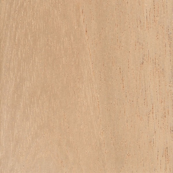 Spanish Cedar exterior or outdoor cabinet doors